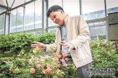 """广州用科技管理每一棵树每片绿地 """"数字"""