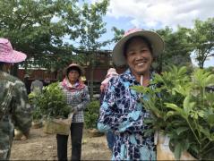 过去一年,碧桂园结对9省14县扶贫做得怎