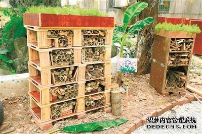 广州中心区域2020年12月底前楼道全部撤桶