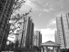 今年1-6月石家庄房地产市场研究报