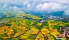 解决好这3个关键词 中国或成世界农业科